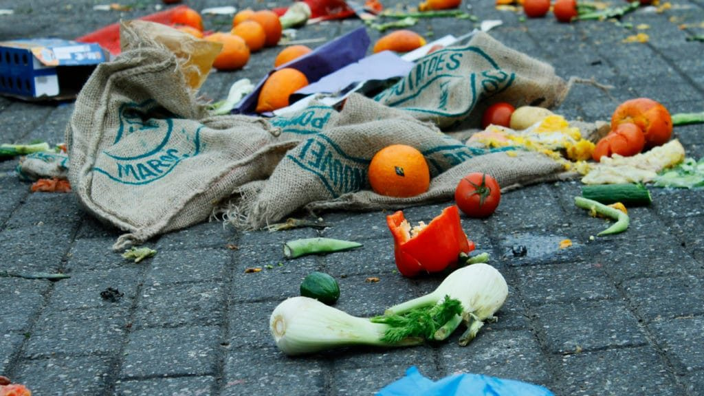expired perishables scattered on the street next to conventional meal kit packaging